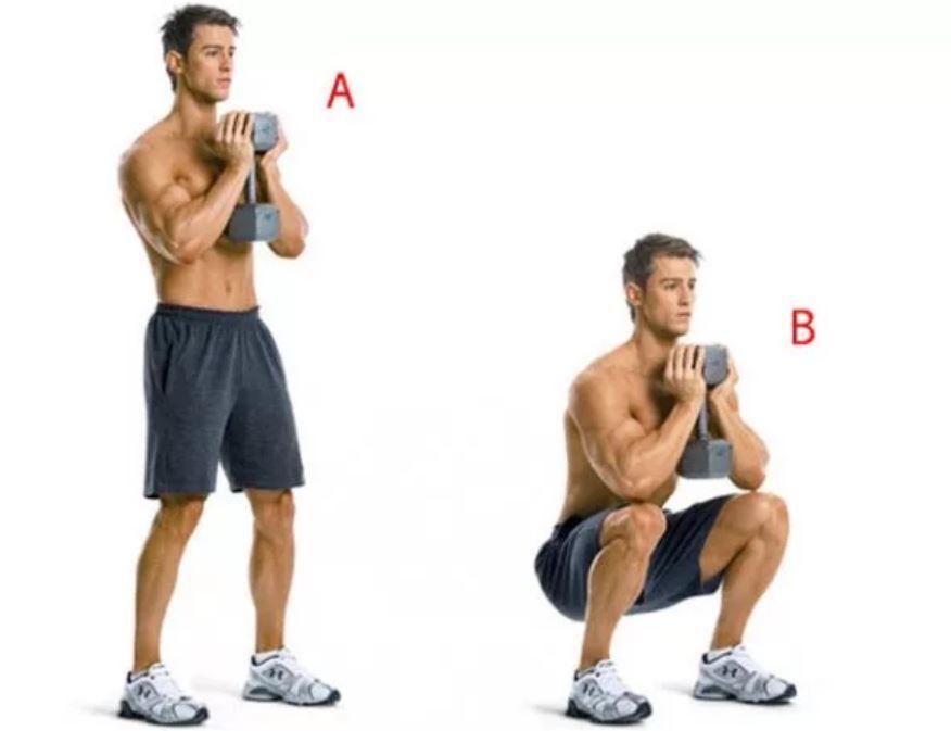 Программа тренировок с гантелями дома для мужчин присед